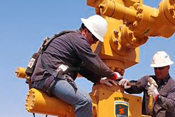 Sentry Wellhead Systems - Browse Products